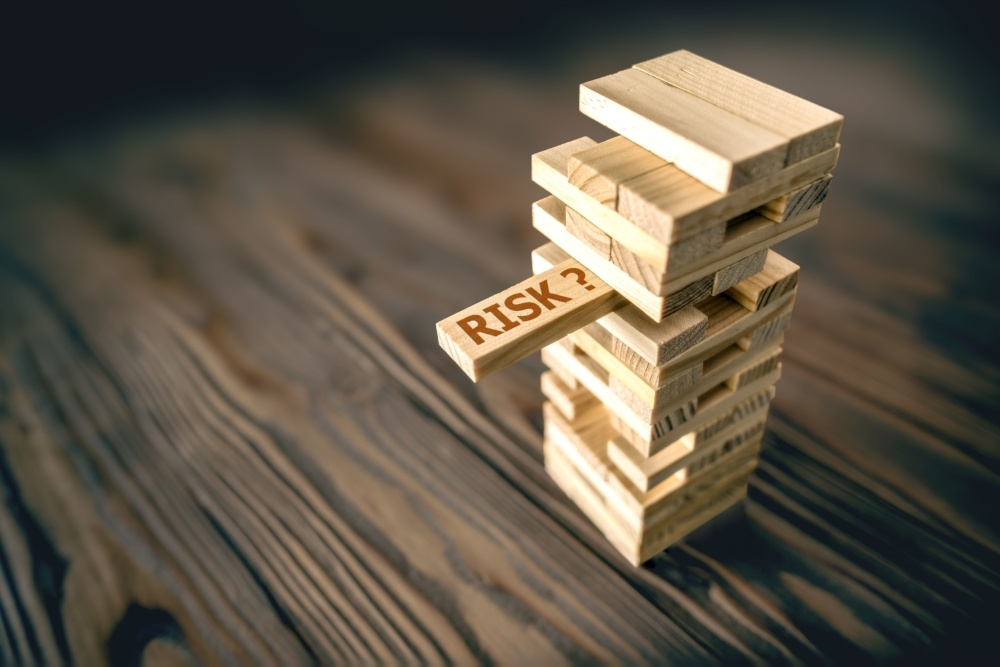 Risk Management Strategies in the Cloud