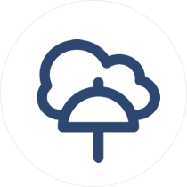 Data-Protection-as-a-Service-DPaaS-icon